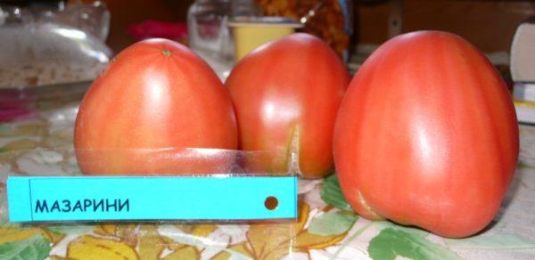 Как выглядят томаты крупным планом