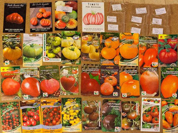 Благодаря множеству сортов, каждый может выбрать помидор по вкусу