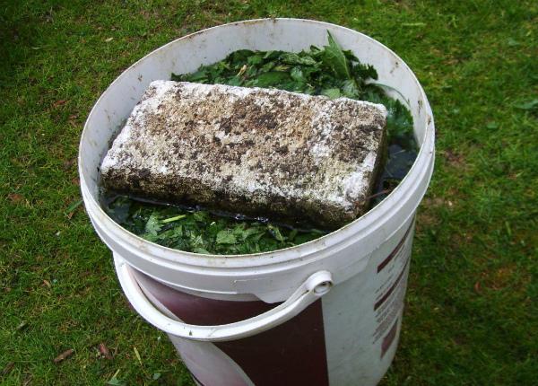 Приготовление органического удобрения из сорных трав