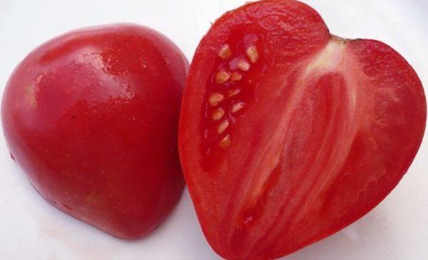 Как выглядит плод в разрезе крупным планом