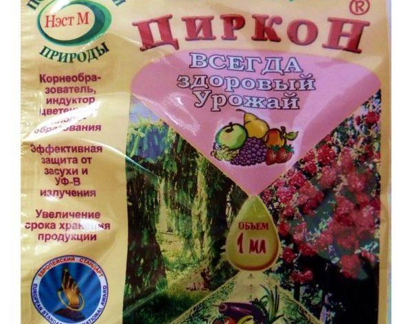 Как выглядит подкормка Циркон для растений, в том числе и томатов