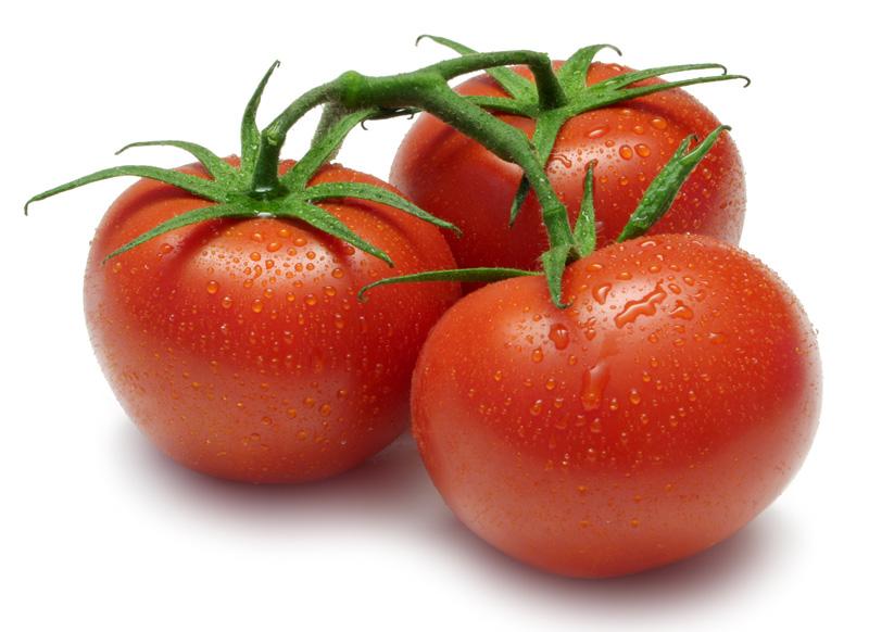 Разновидность томатов примадонна