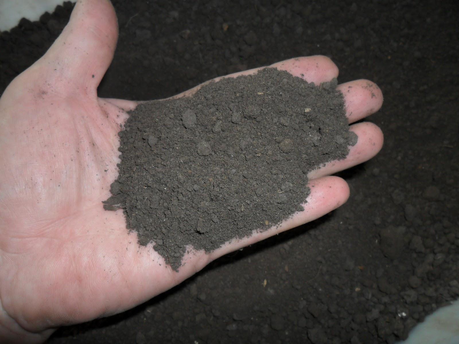Фото обработанного грунта для рассады