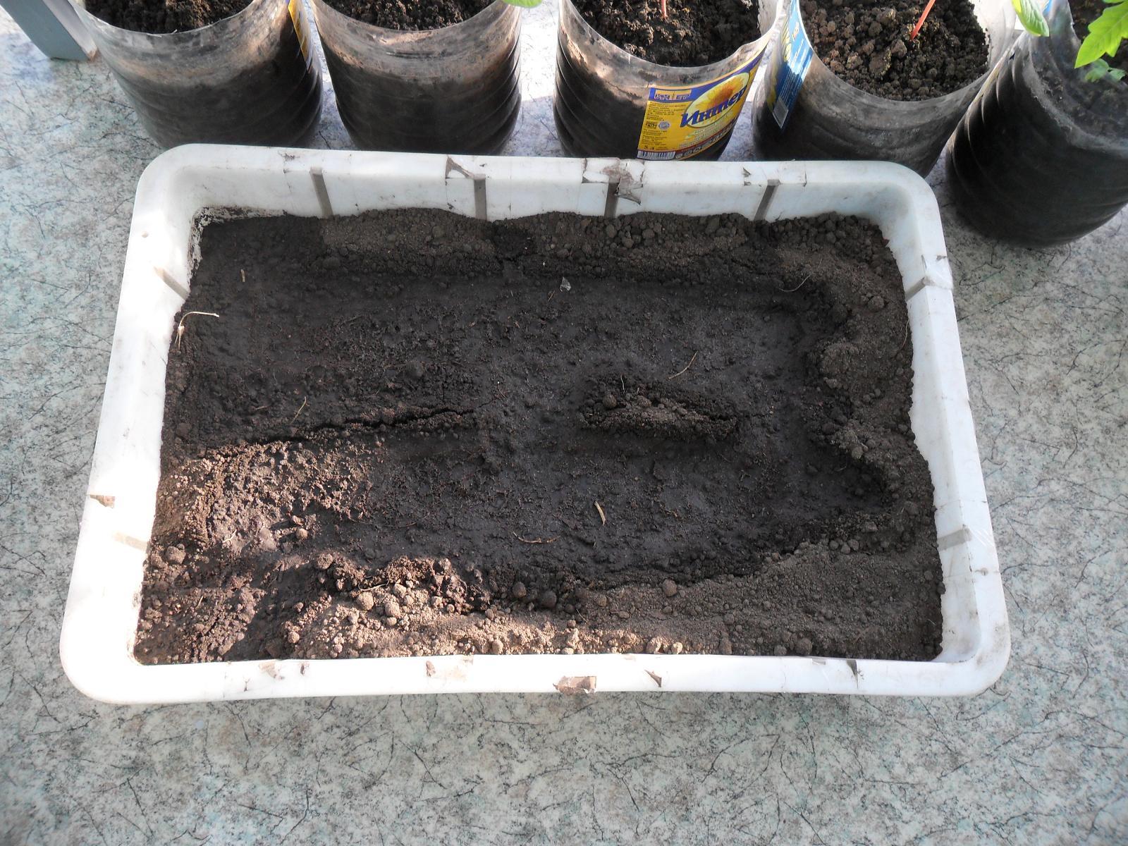 Подготовка грунта для высадки перца