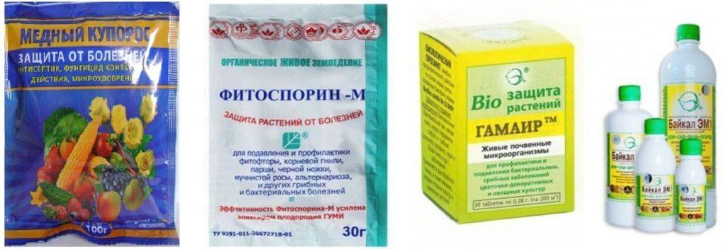 Пример препаратов для борьбы с фитофторой