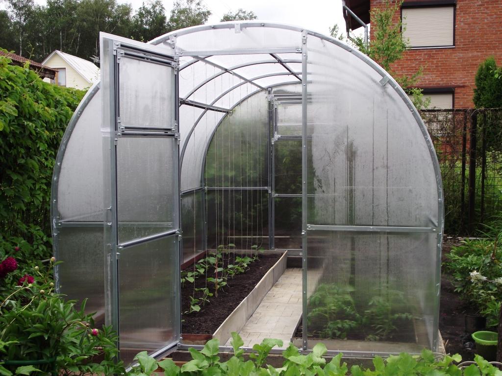 Пример теплицы из поликарбоната для выращивания томатов