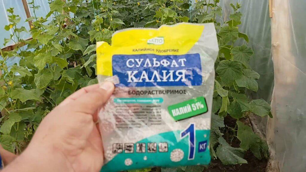 Удобрение малины сульфатом калия