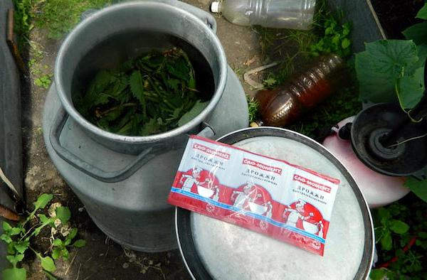 Приготовление дрожжевой подкормки для огурцов на растительной основе