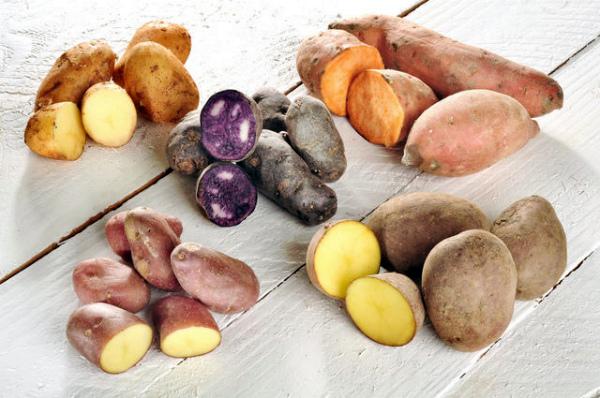 Разнообразие выбора сортов картофеля