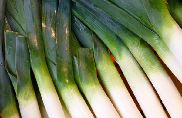 Зеленый лук на столе