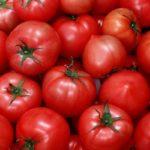 Урожай помидоров на огороде
