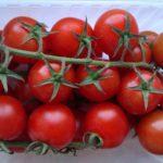 Урожай интердемиантных помидор