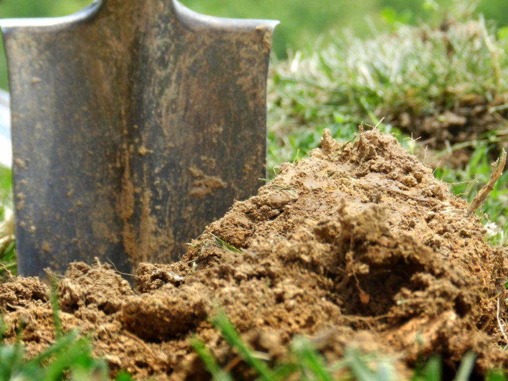 Удобрение для почвы на огороде