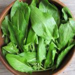 Листья зеленого щавеля в тарелке