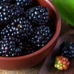 Урожай черной малины в тарелке