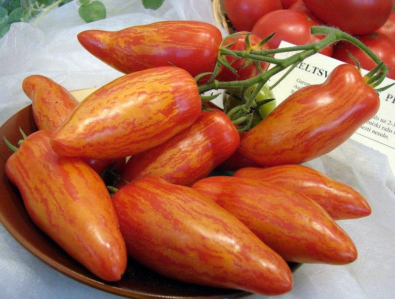 Отборные перцевидные томаты
