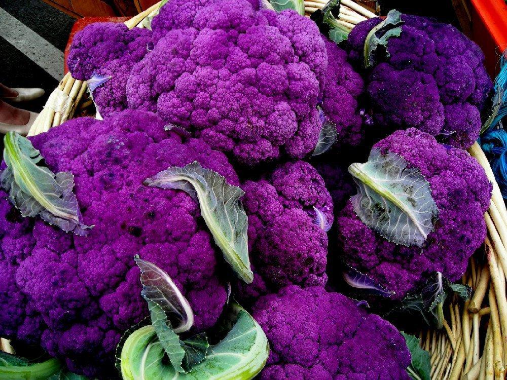 Полезные свойства капусты цветной фиолетовой