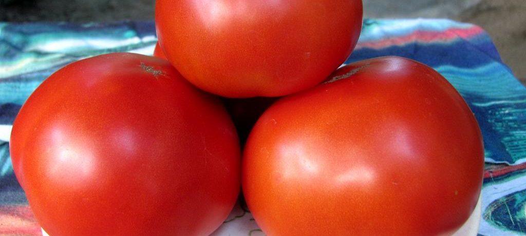 Крупные томаты на тарелке