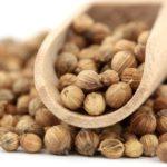 Семена кориандра на лопатке