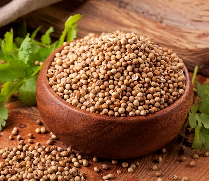 Семена в тарелке кориандра