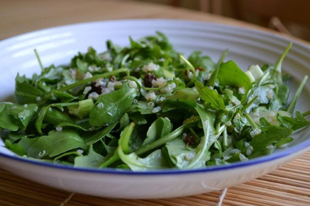 Салат с листьями рукколы