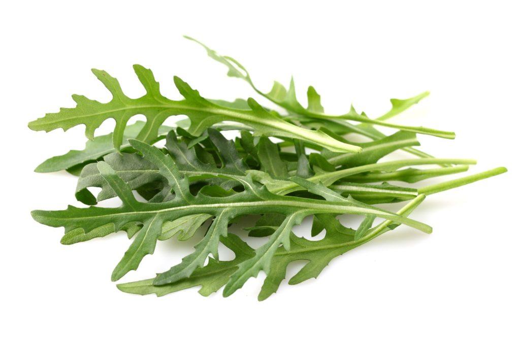 Зеленые листья рукколы