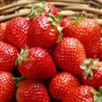 Урожай ягод в корзинке