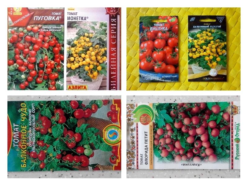 Лучшие сорта помидоров для выращивания дома
