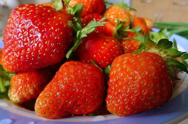 Спелые ягоды сорта Любава