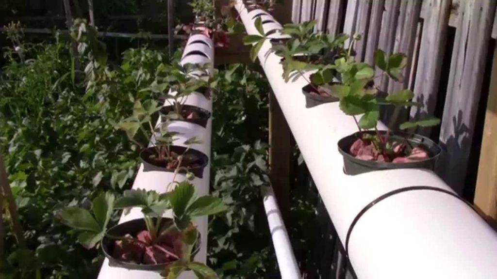 Горизонтальное выращивание в ПВХ конструкциях