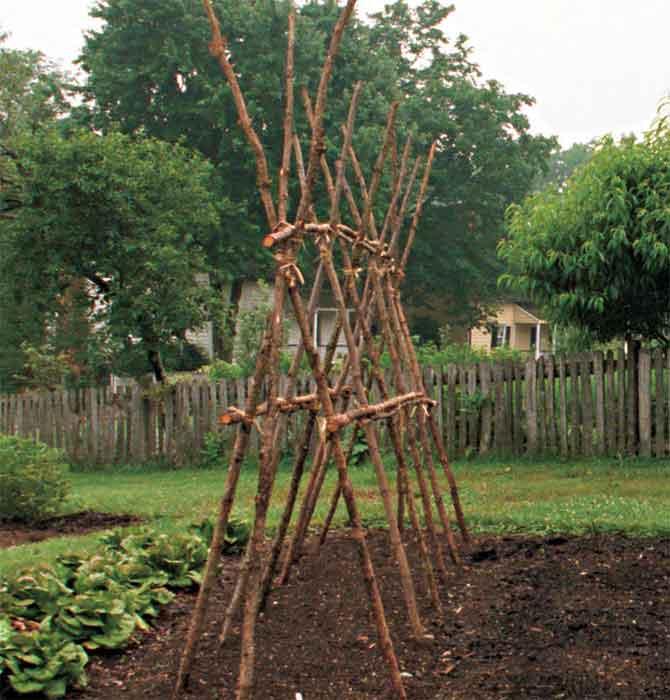 А-образная конструкция для вьющихся растений