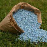 Удобрения для рассады и огорода