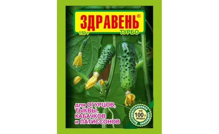 Выращивание огурцов: от посадки до сбора урожая