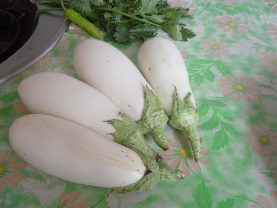 Сорт баклажанов Белая Лилия