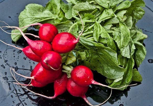 Как хранить редиску, чтобы лакомиться овощем всю зиму: заморозка, заготовки в подвале