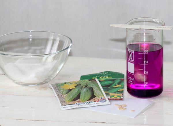 Семена можно обрабатывать раствором марганцовки