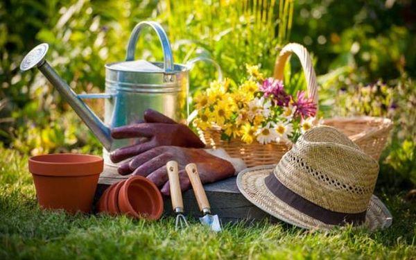 Август - насыщенный месяц для садовода