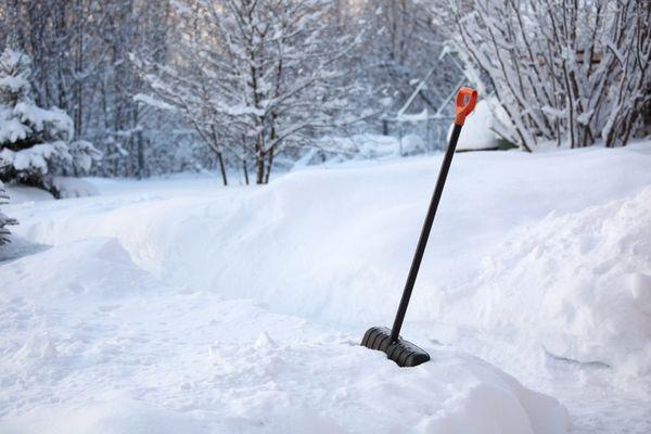 В декабре садоводов ждет много работы