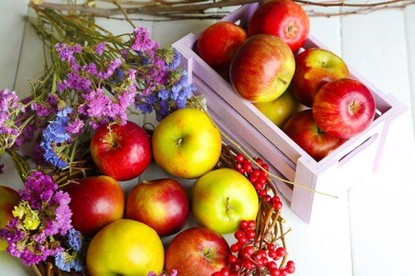 Календарь для садовода на октябрь 2017 года