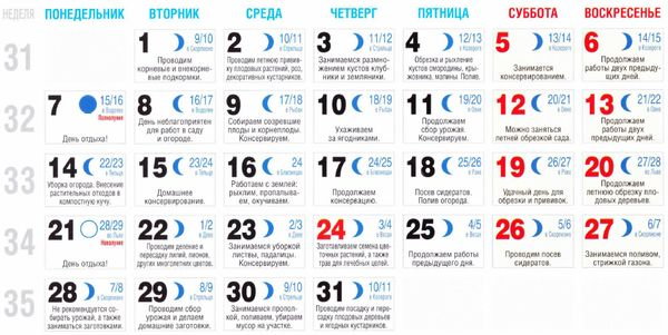 Динамо м календарь игр