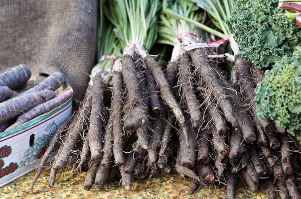 Черная морковь очень полезна для организма