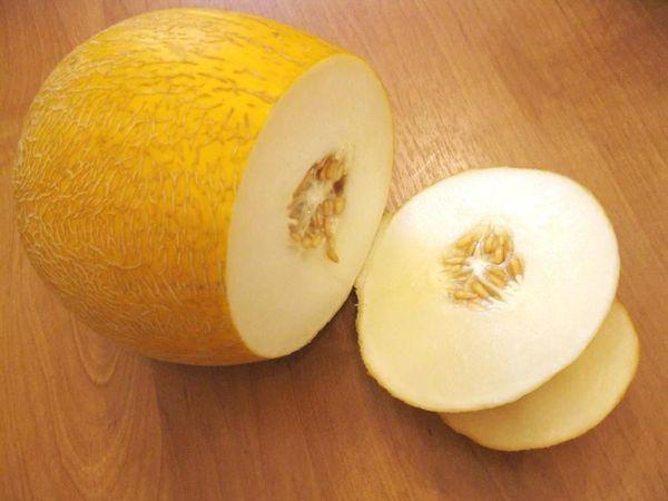 Среднеспелые сорта дыни пользуются популярностью