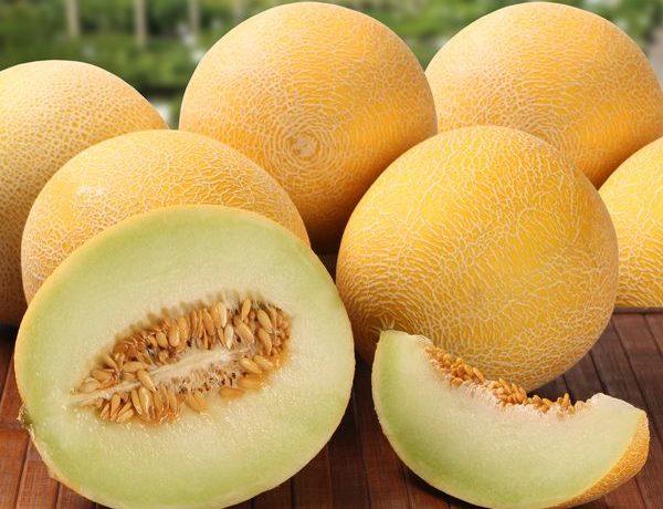 Дыня - один из самых вкусных плодов