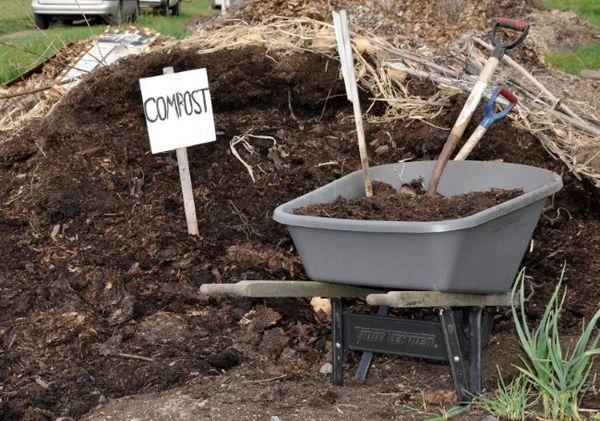 Органические удобрения популярны из-за экологичности