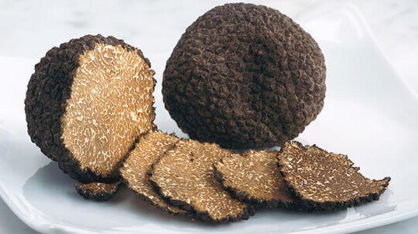 Трюфели - дорогие и редкие грибы