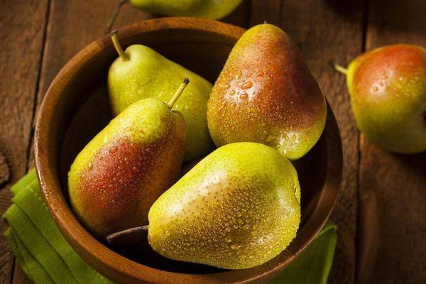 Плоды груши Лесная красавица отменные вкусовые качества