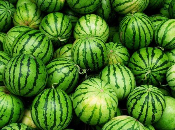 Плод имеет плотную защитную кожуру