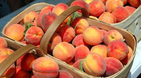 Следите, чтобы персики не перележали в контейнере