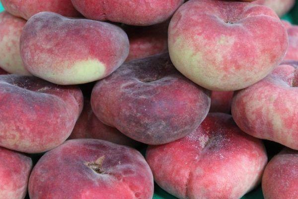 Гибрид садового персика и инжира