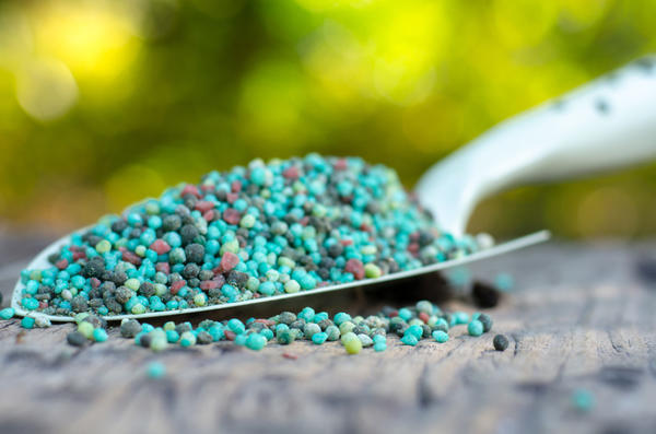 Неправильное использование химических удобрений может привести к повреждению корневой системы